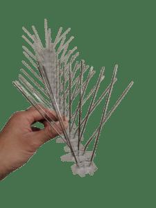 vogelpinnen - duivenpinnen budget ongedierte bestrijden