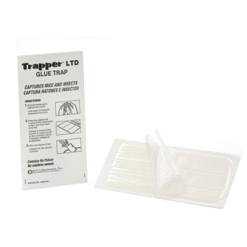 trapper-max-ltd-lijmval-lijmplank-muizen
