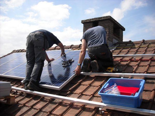 rvs-vogelwering-zonnepanelen-budget-ongedierte-bestrijden