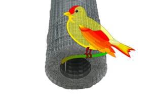volieregaas-muizengaas-vogelgaas-budget-ongedierte-bestrijden